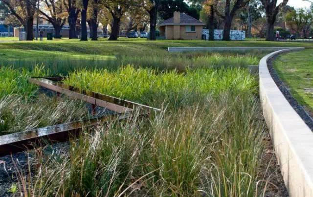 海绵城市的经典案例——当雨水流过城市 |雨水花园