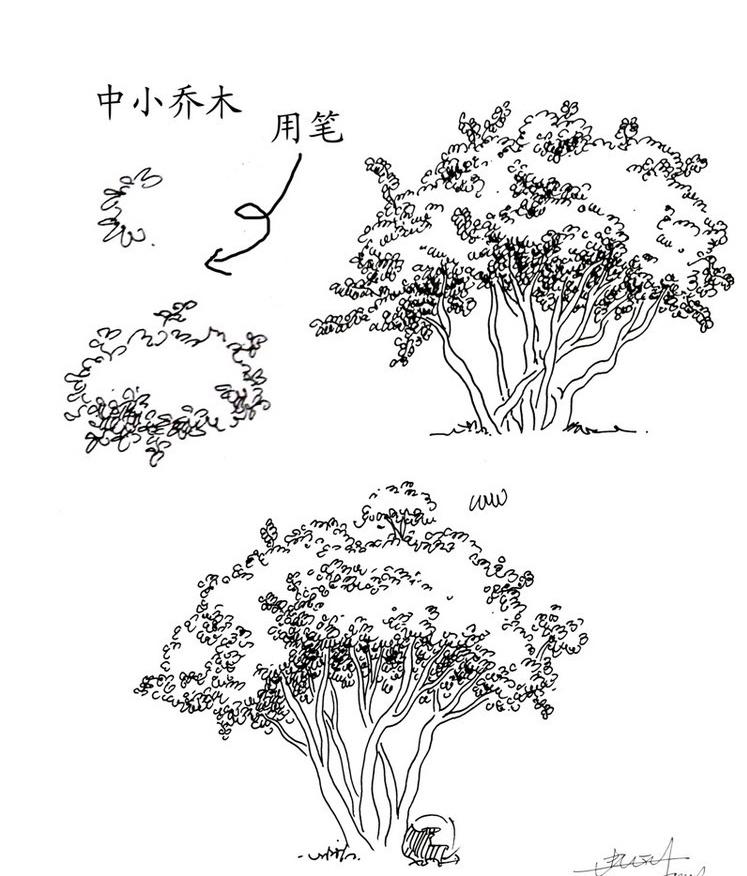 江南园林手绘鸟瞰