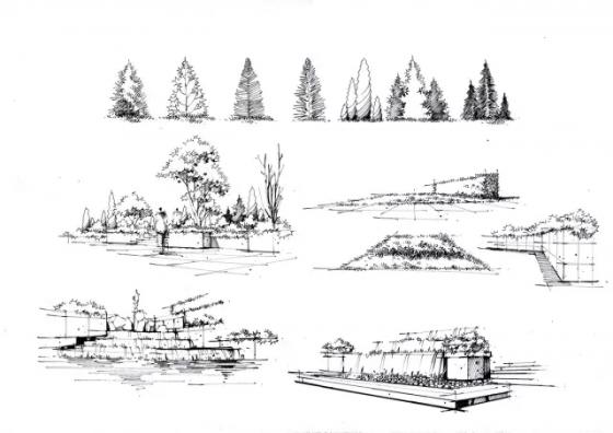 园林景观钢笔画临摹